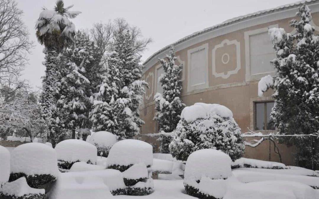Fotos de la nevada en Brihuega