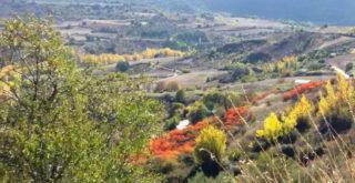 Valle del río Tajuña, a un paso de la Villa de Brihuega.